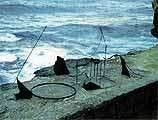 Orest Kerwan* also won First Prize in the 1999 Sculpture by the Sea. - Keywan, Orest. With a View