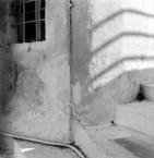 Steps in Hora