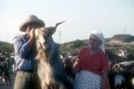 Peter and Stamatoula Gika and Goats
