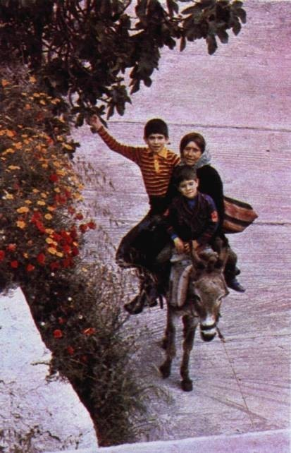 Koula Calligeros, with her two nephews, rides home after a day's work.