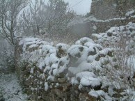 Snow in 2004 IV
