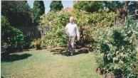Emanuel Casimatis. Master gardener. He loved his figs.