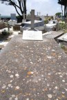 Antonios Megalokonomos tomb, Potamos (2 of 2)