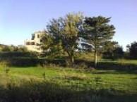 house potamos1