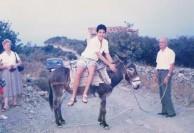 Donkey Ride 1986