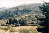 Livathi
