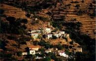 Terraces at Karavas2