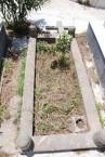 Grave of Dimitrios Megalokonomos, Potamos