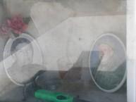 Ioannis P. Venardos grave, Ag. Anastasia (2 of 2)