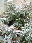 Snow in 2004 I