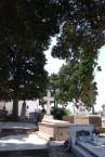 Potamos Cemetery