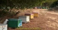 Beehives on Kythera