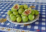 Figs from Mitata