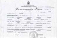 Wedding Certificate of Chris Coroneos (Christoforos Dimitriou Koroneos) and Melba Koroneos (Melpomeni Kosma Komino).