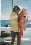 Emanuel Casimatis. A catch from one of the Kytherian fishing trips to the Great Barrier Reef